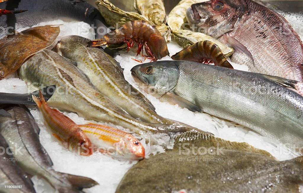 Great variety of fish and seafood royalty-free stock photo