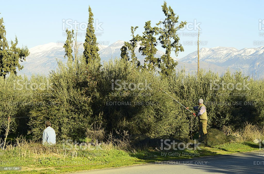 Greece, Crete stock photo
