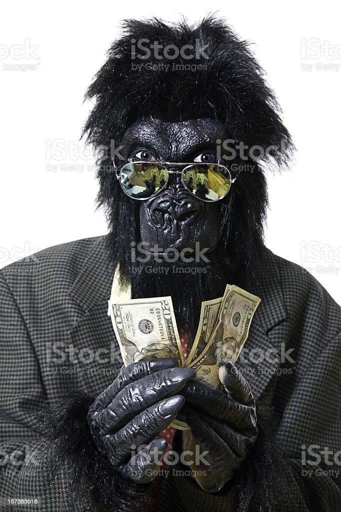 Greedy Gorilla Businessman stock photo