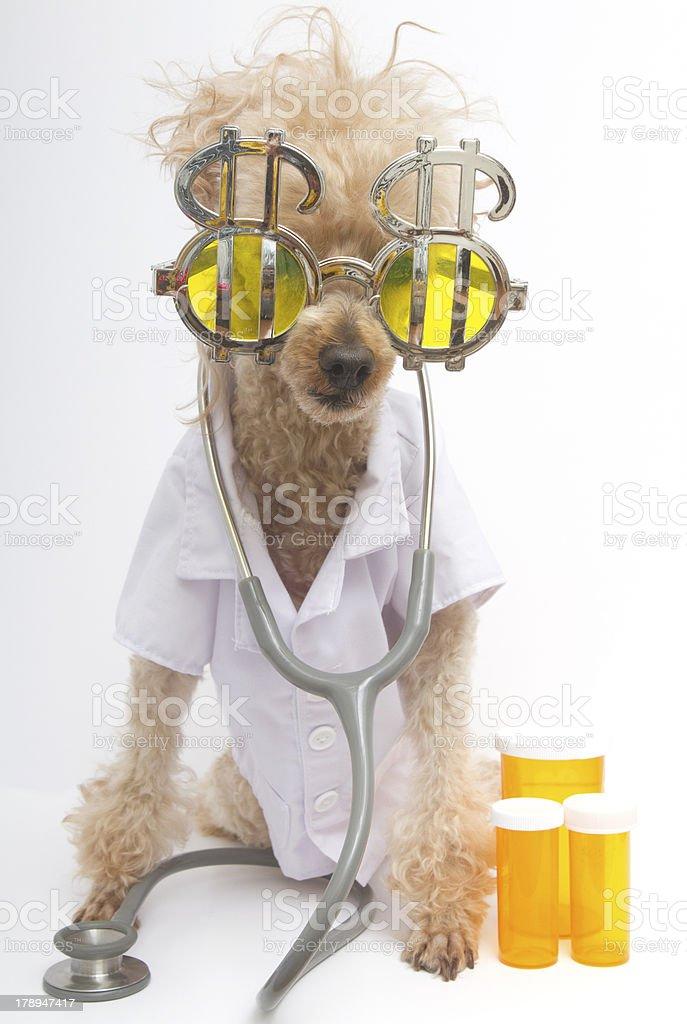 Greedy Healthcare Provider royalty-free stock photo