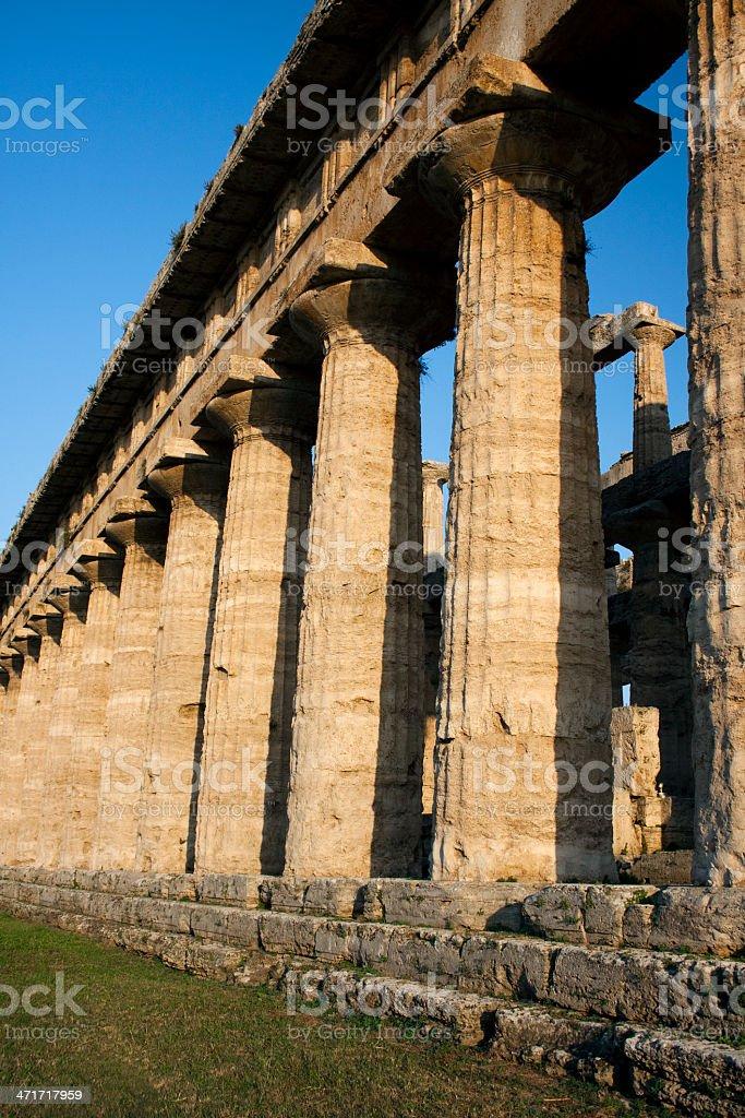 Greek columns in Paestum, Italy stock photo