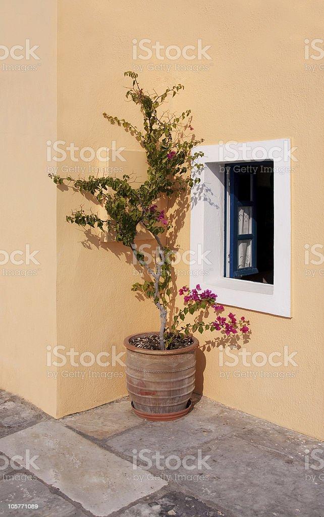 Greek Garden royalty-free stock photo