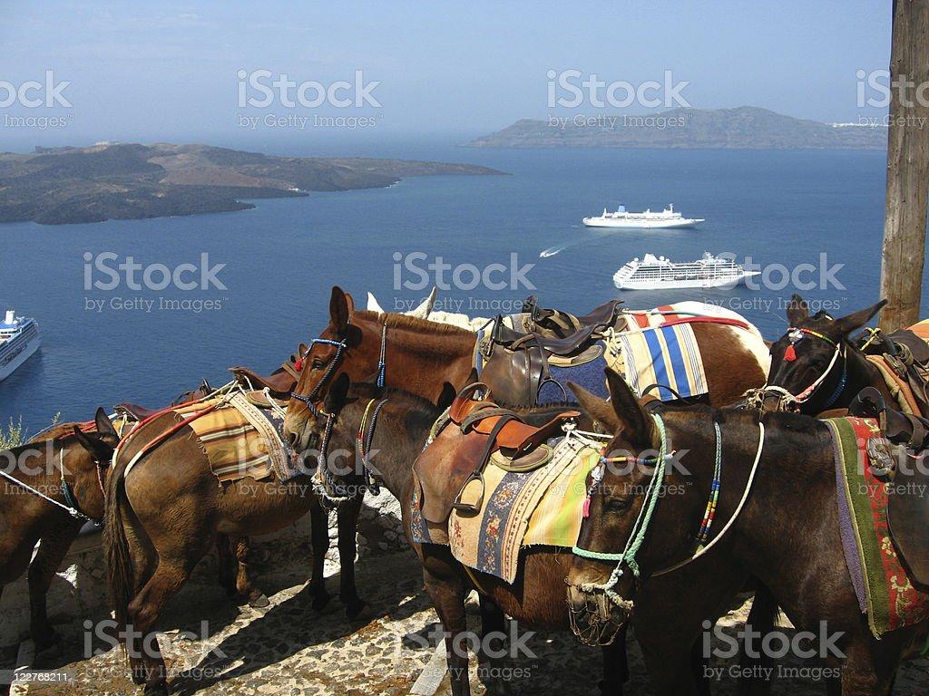 greek mules royalty-free stock photo