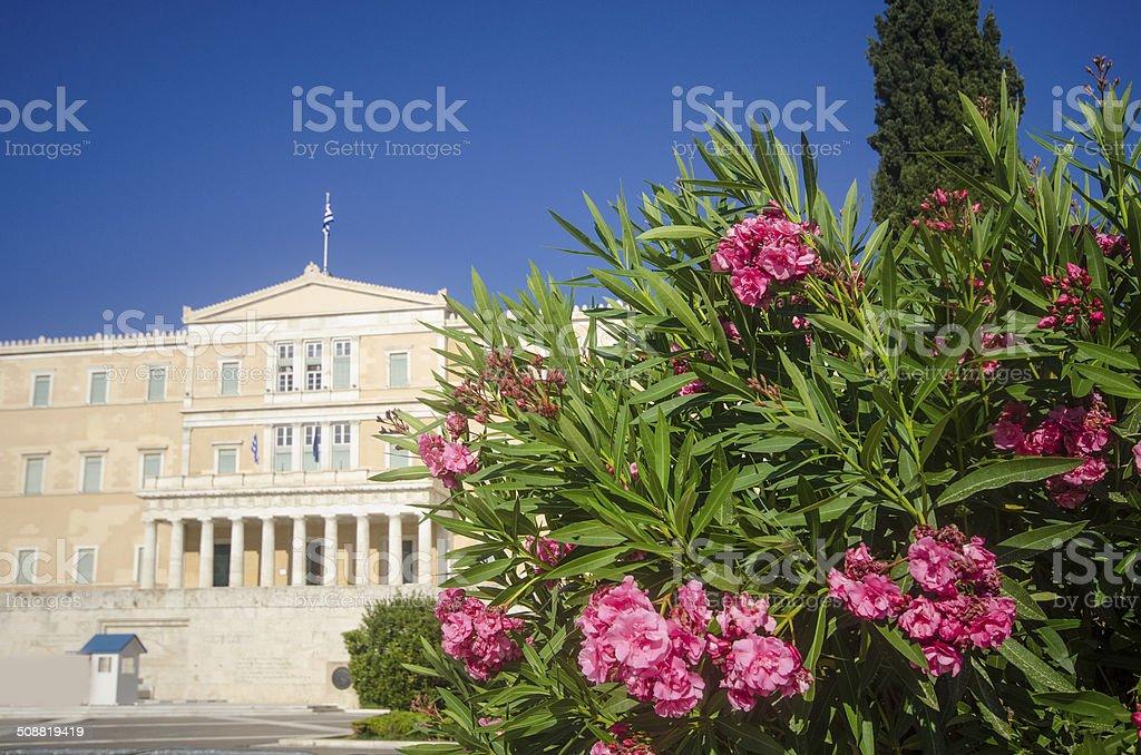 Greek Parliament stock photo
