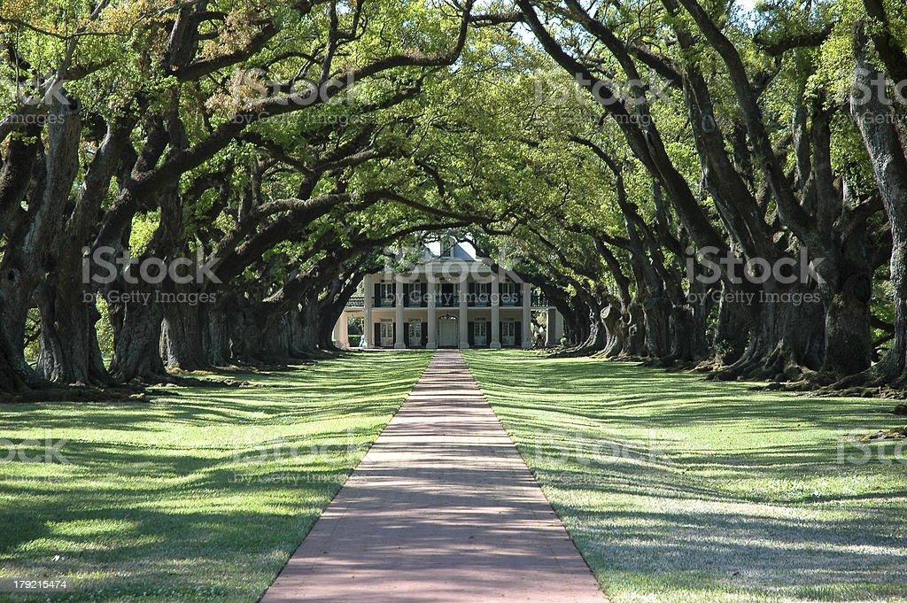 Greek Revival Mansion At Old Southern Plantation stock photo