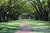 Greek Revival Mansion At Old Southern Plantation