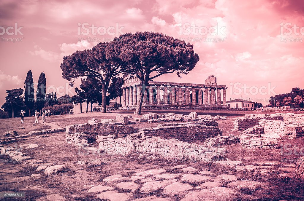 Greek temples at Paestum in Italy stock photo