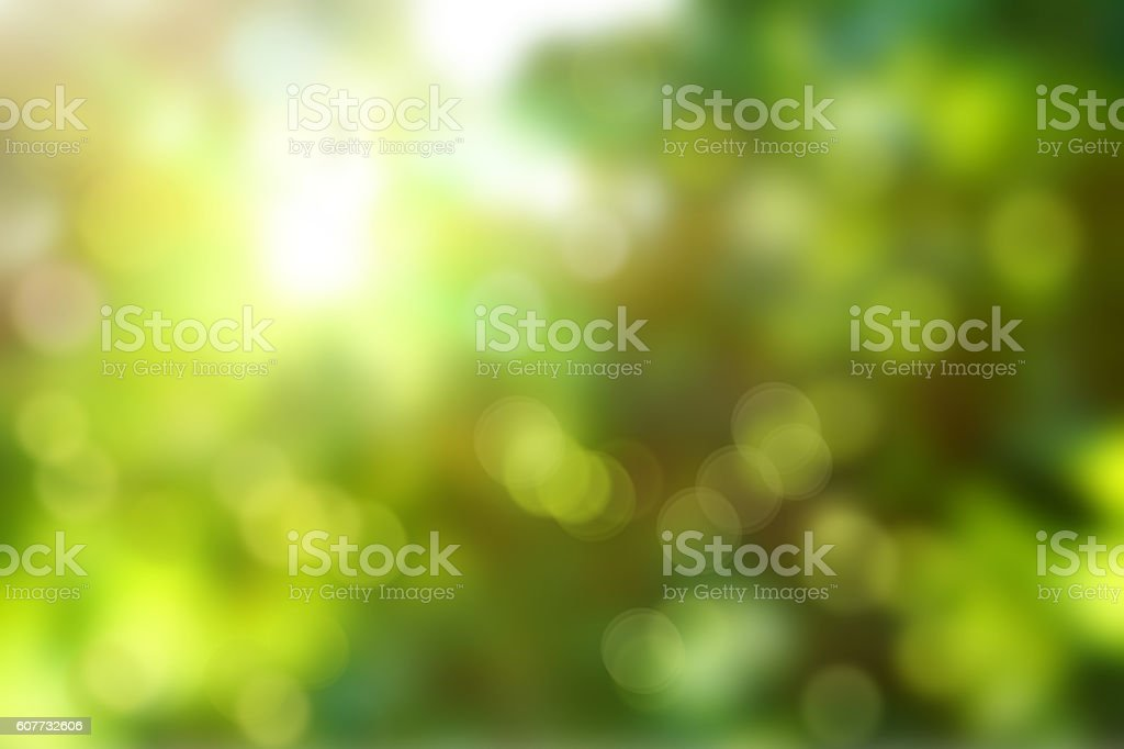 Green abstract background blur stock photo