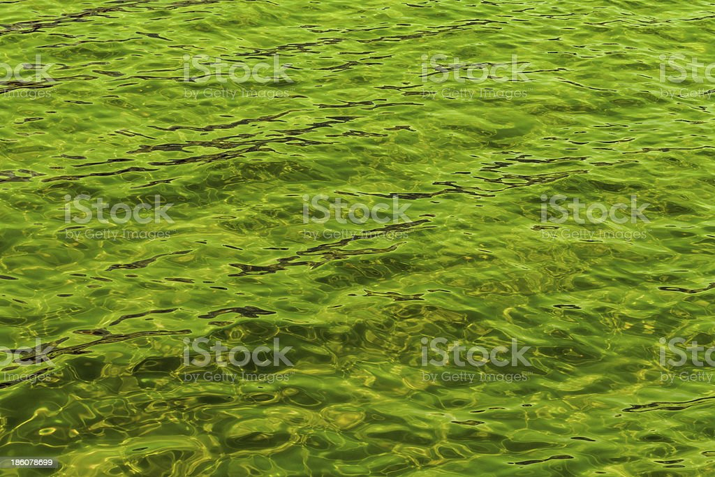 green abstract background of wavy water royalty-free stock photo