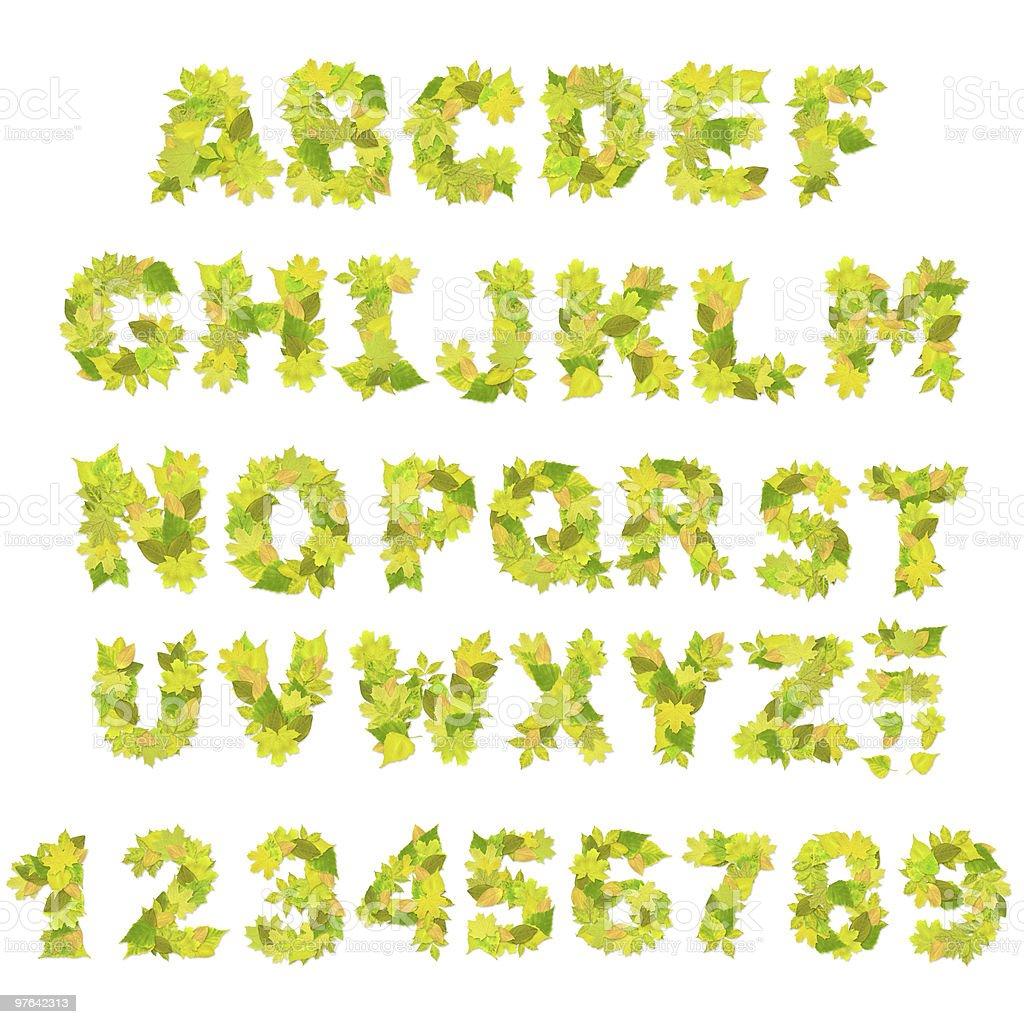 Green alphabet royalty-free stock photo