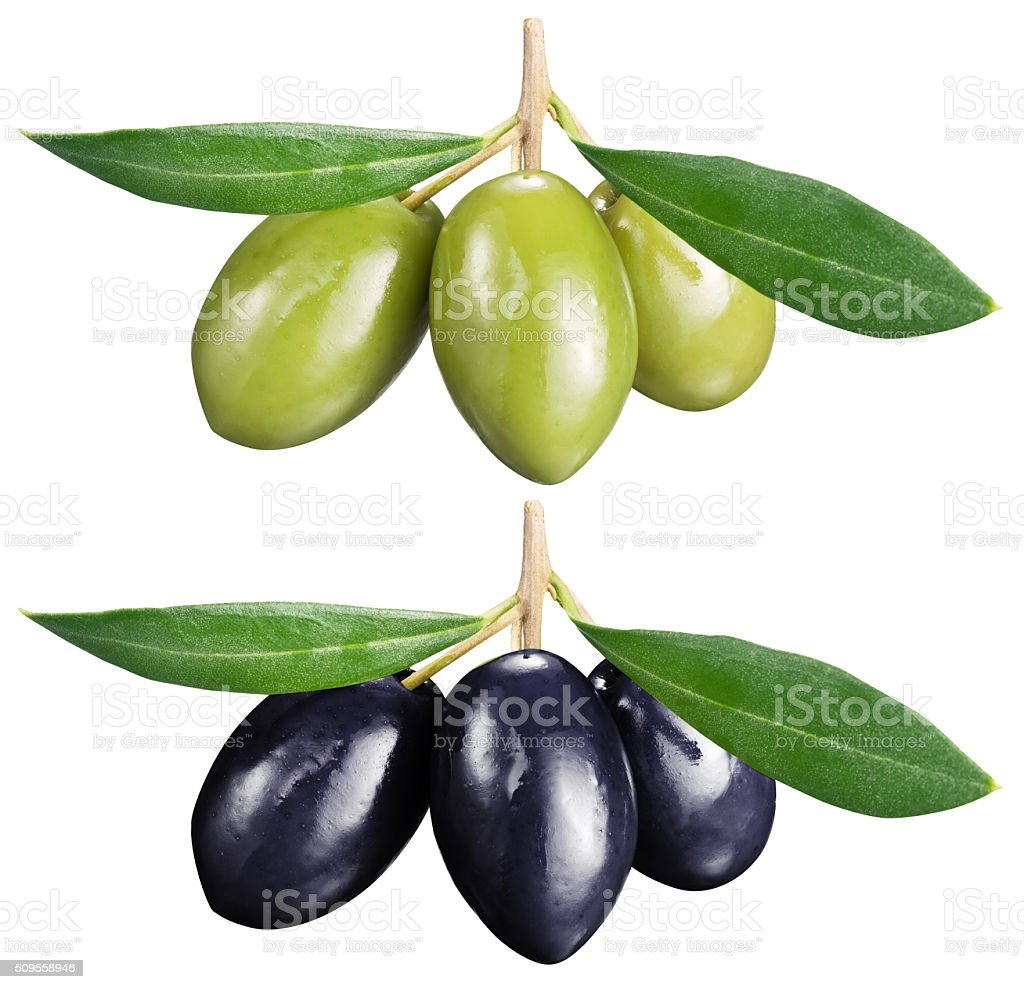 Green and black olives with leaves on a white background. stock photo