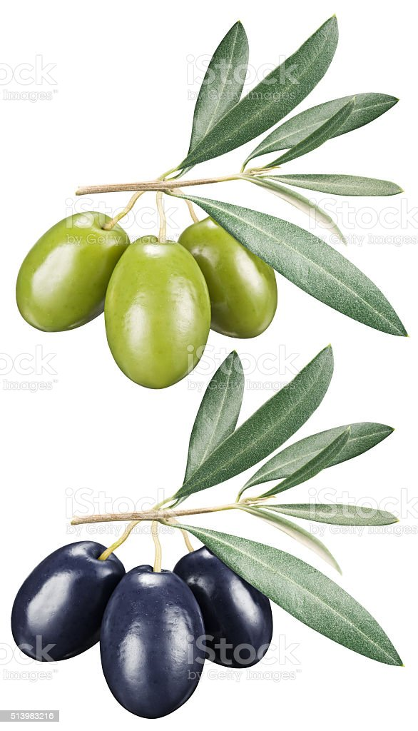 Green and black olives with leaves. stock photo