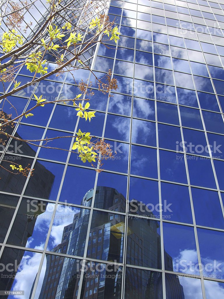 Green and Blue Business royalty-free stock photo