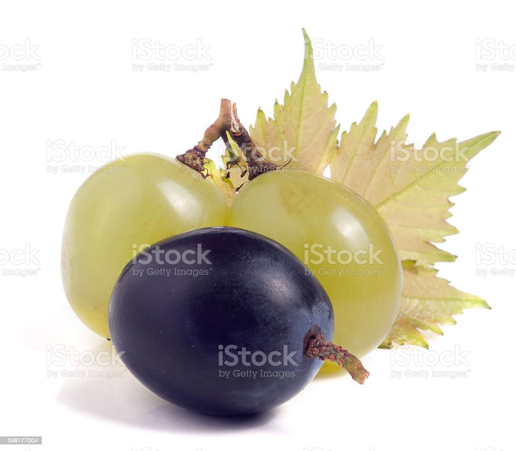 green and blue grapes with leaf isolated on white background stock photo