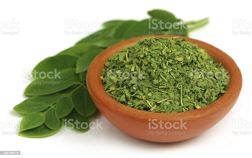 Green and dired moringa leaves stock photo