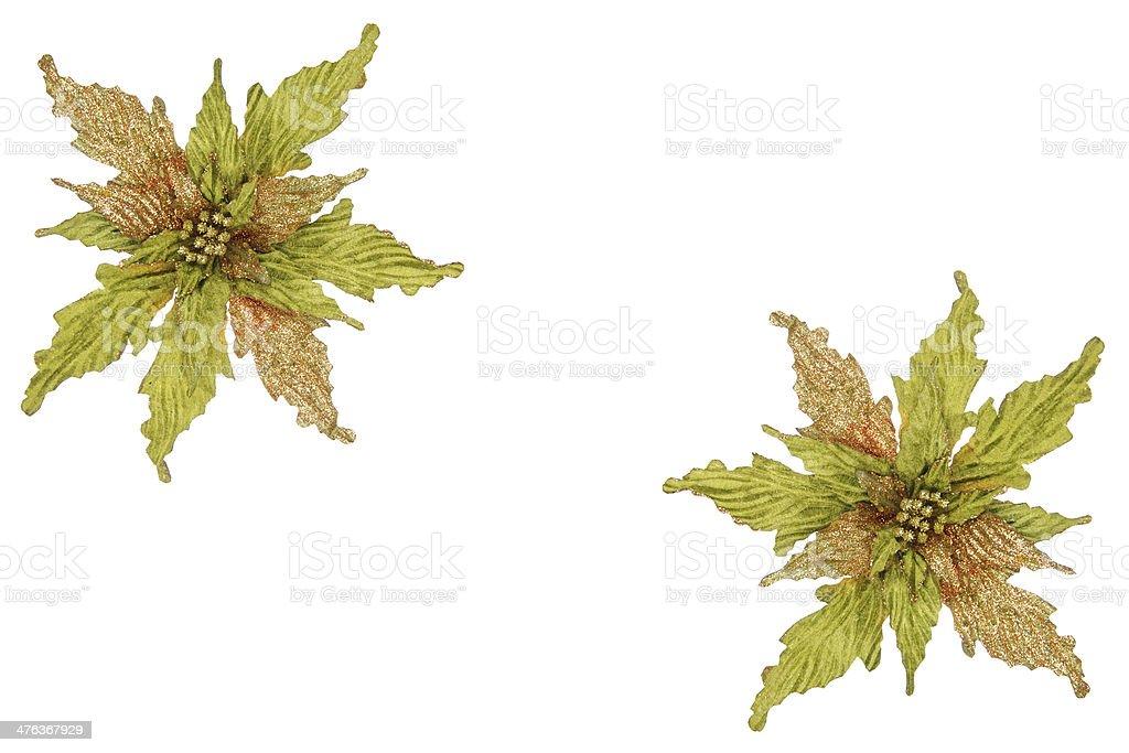 Green And Gold Glitter Poinsettia Border royalty-free stock photo