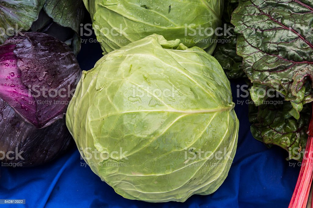 Green and purple cabbage with swiss chard for sale stock photo