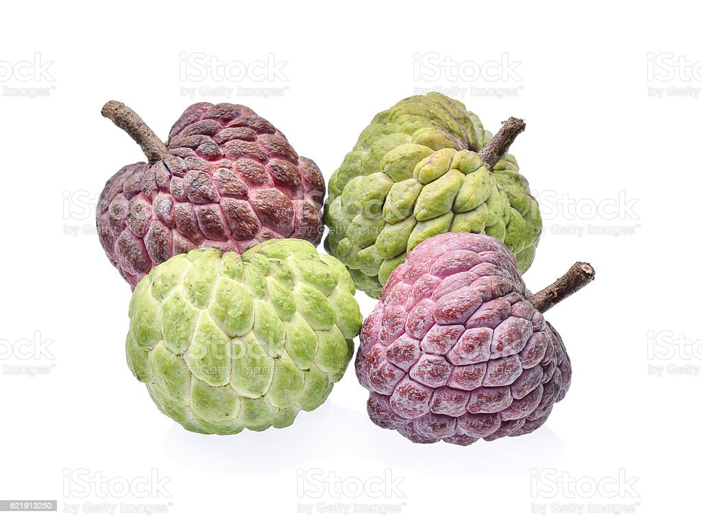 Green and purple custard apple with white background stock photo