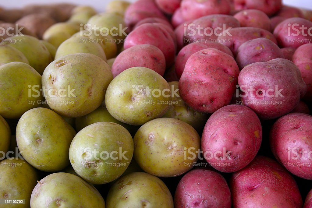 Green and Red Potatoes stock photo