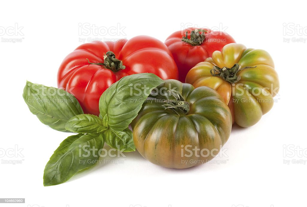 Green and red tomatoes with basil stock photo