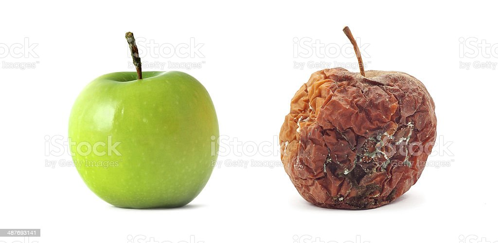 Green and rotten apples. Isolated object. stock photo