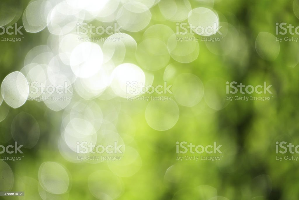 green and white bokeh stock photo