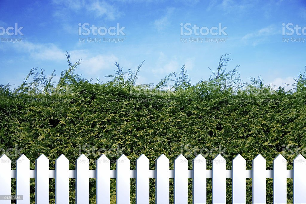 green and white fences royalty-free stock photo