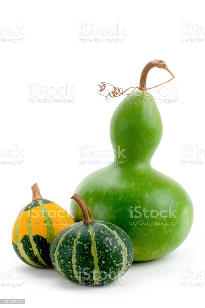Green and yellow gourds over a white background stock photo