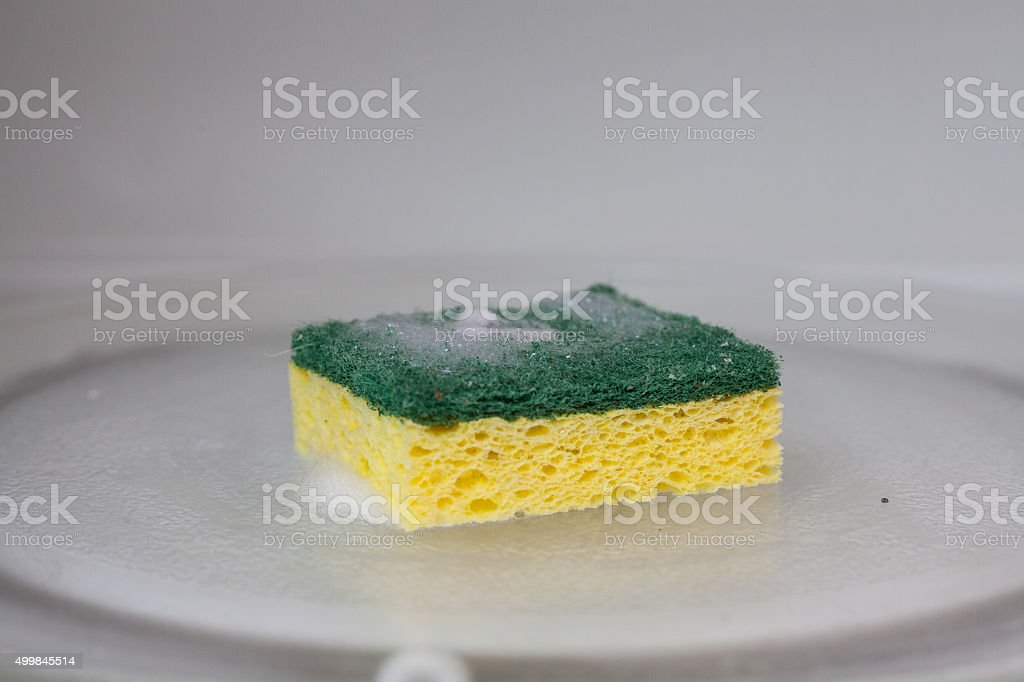 green and yellow sponge in microwave stock photo