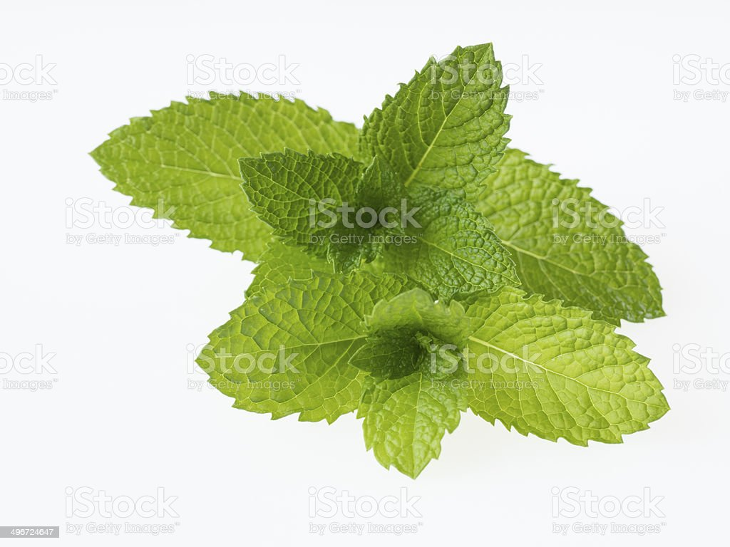 Green apple mint isolated on white background stock photo