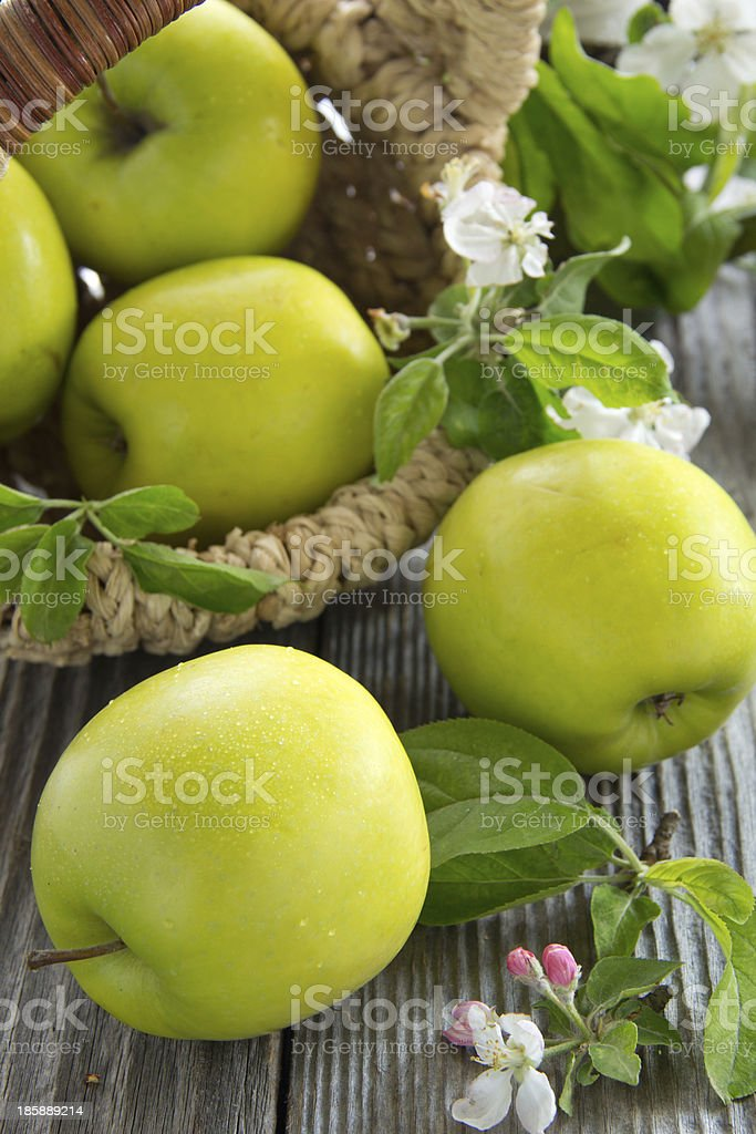 Green apples. royalty-free stock photo