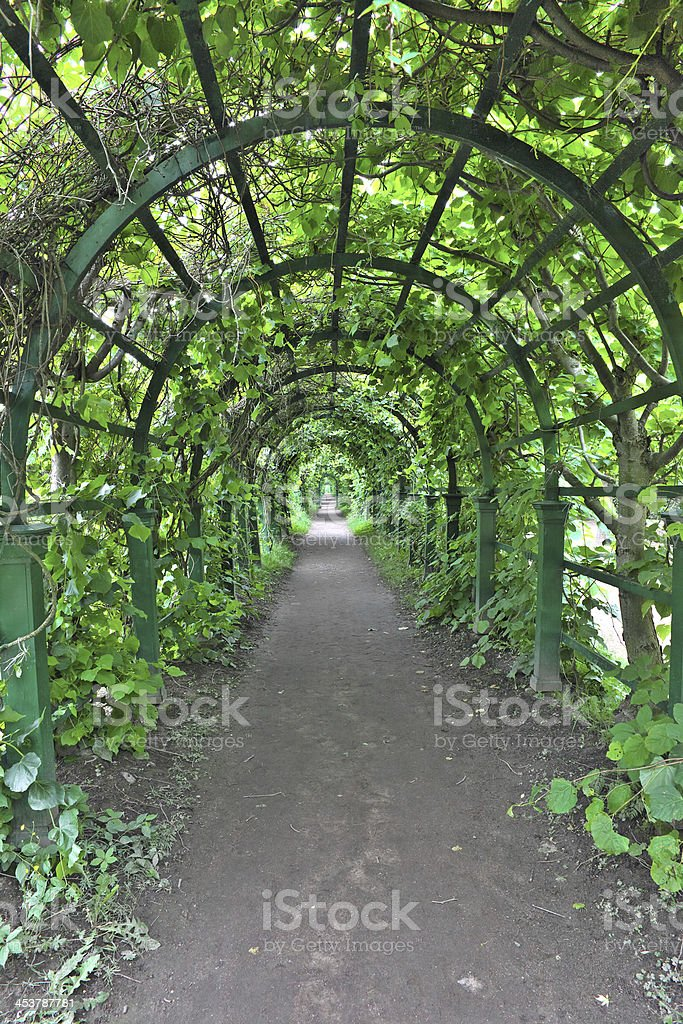 Green archway in a garden. Peterghof.St.Peterburg royalty-free stock photo