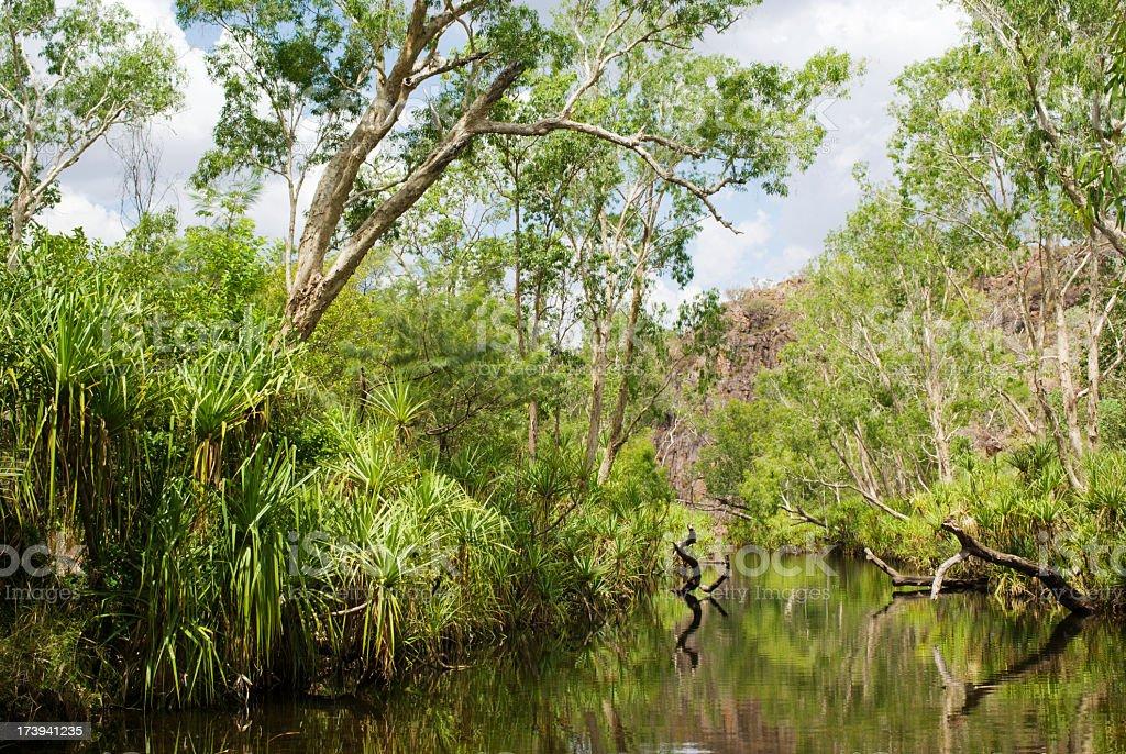 Green Australia royalty-free stock photo