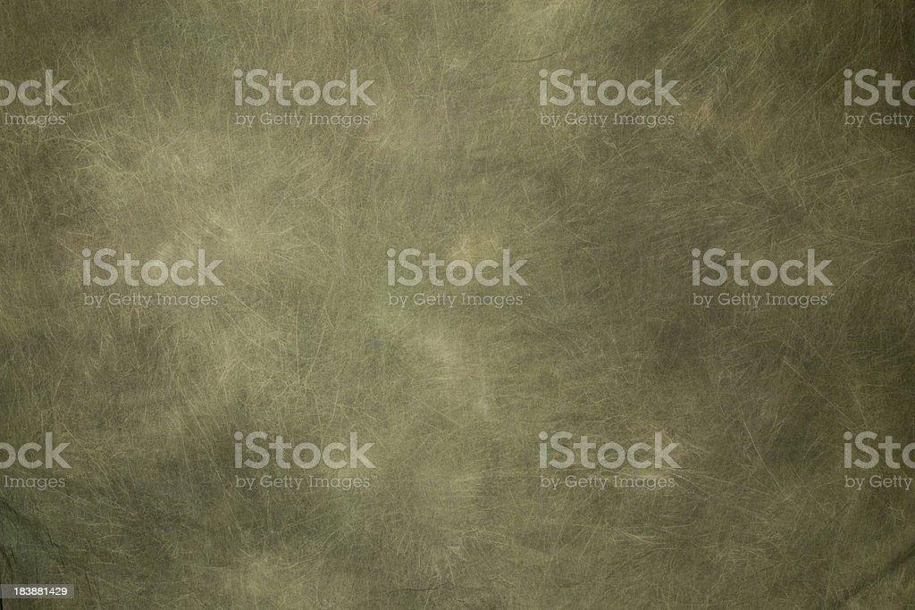 green backdrop stock photo