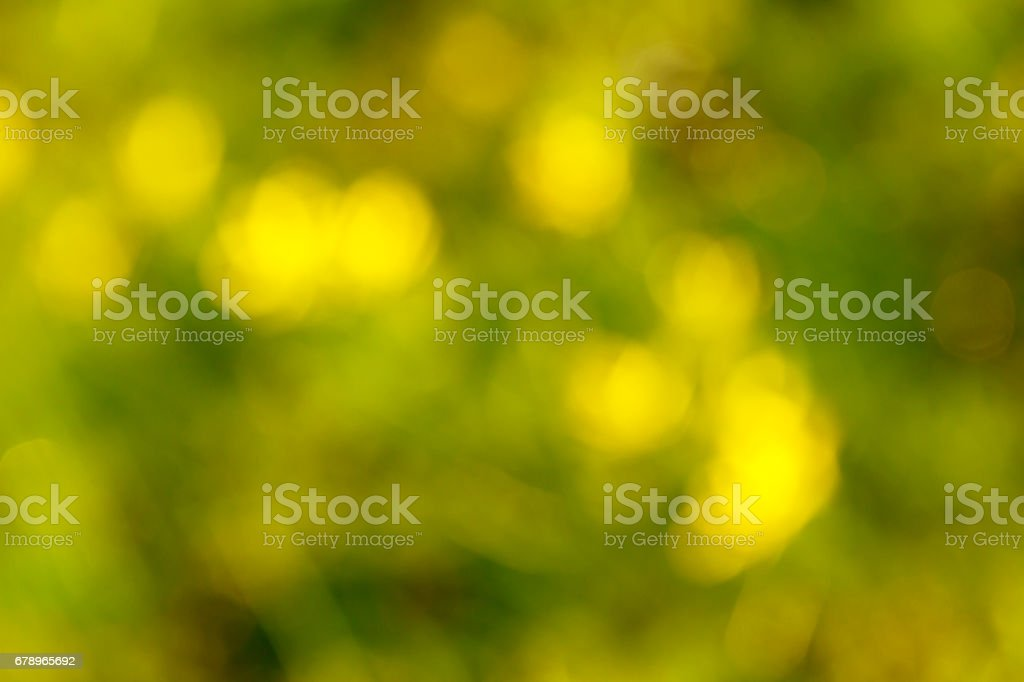 Green background on nature. Defocus abstract blur background. stock photo