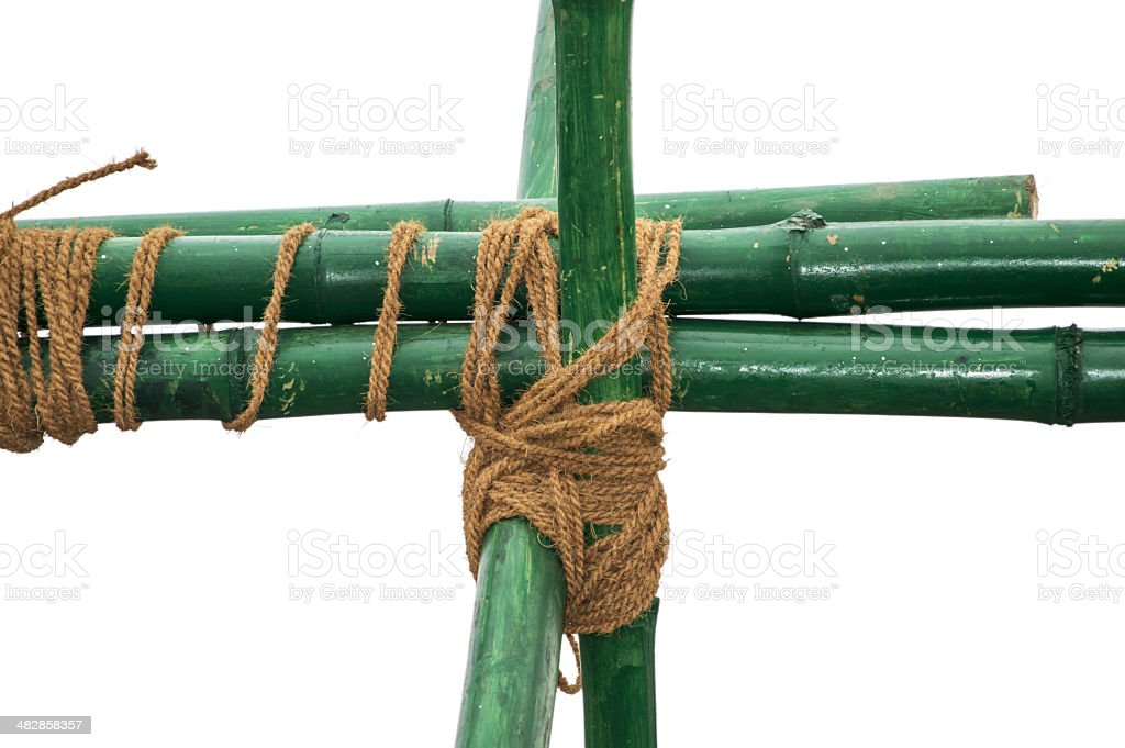 Green bamboo knotted with rope stock photo