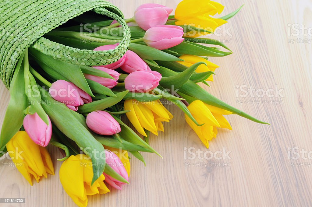 green basket with tulips stock photo