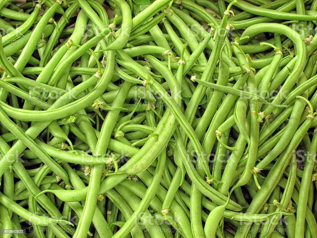 Green bean pod stock photo