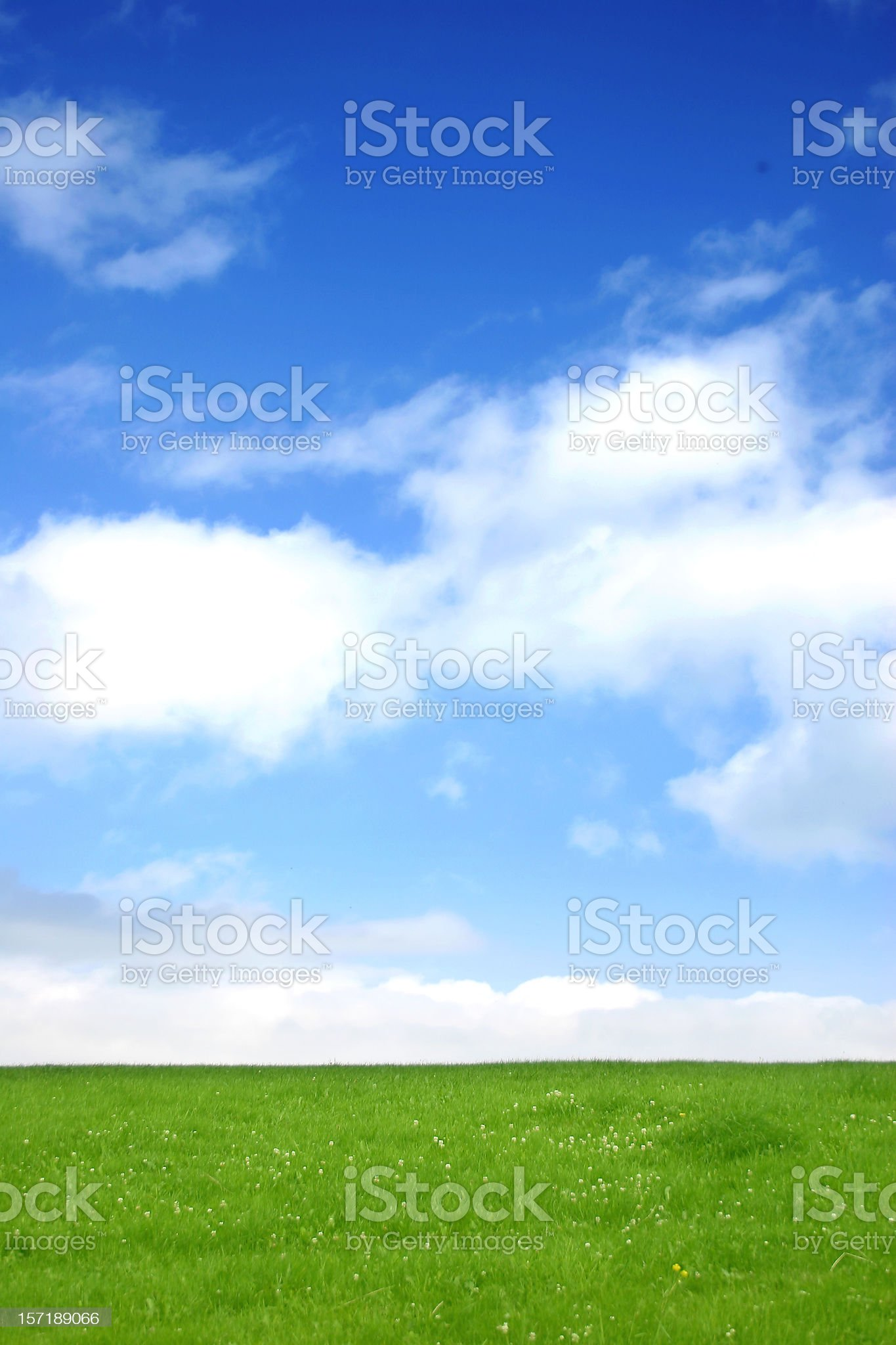 Green & Blue royalty-free stock photo