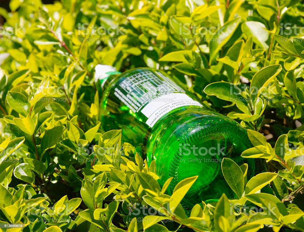 green bottle left in nature and surrounded by leaves stock photo