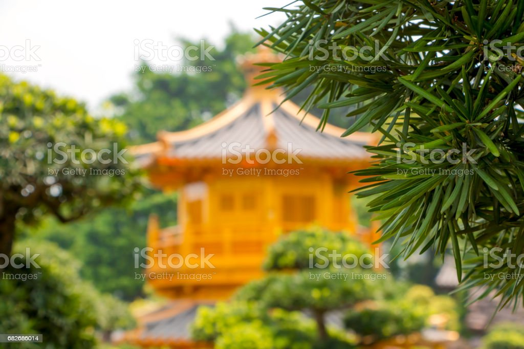 Green Branch and Defocused Golden Pavilion stock photo