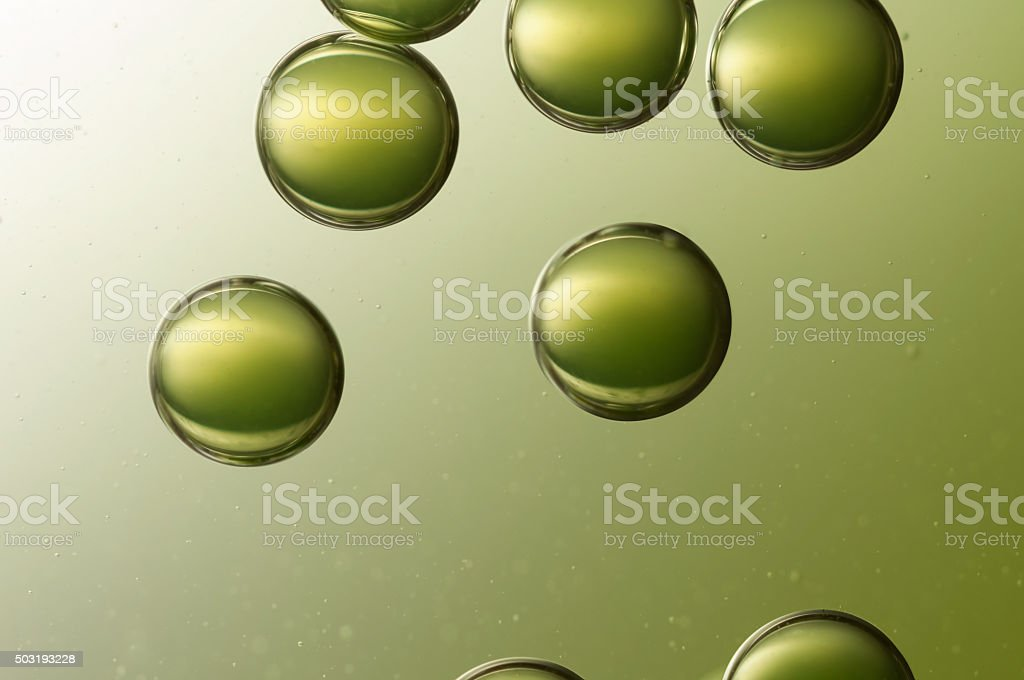 Green bubbles stock photo