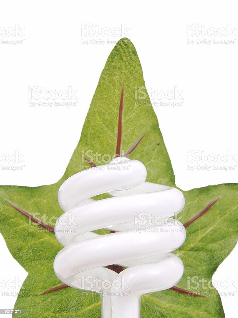 Green Bulb royalty-free stock photo