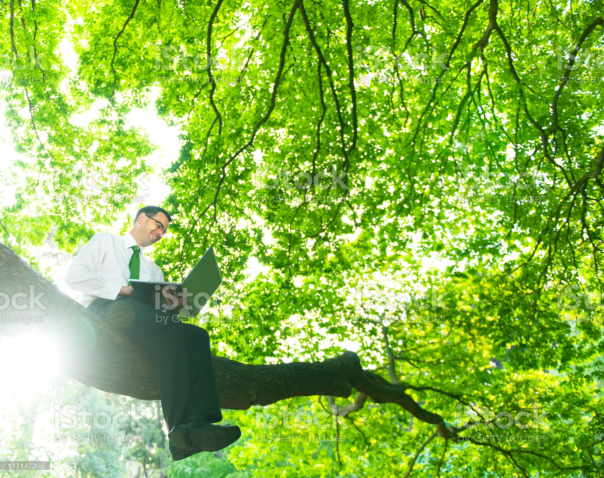 Green Businessman in touch with Nature royalty-free stock photo