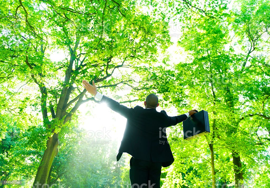 Green businessman in touch with trees stock photo
