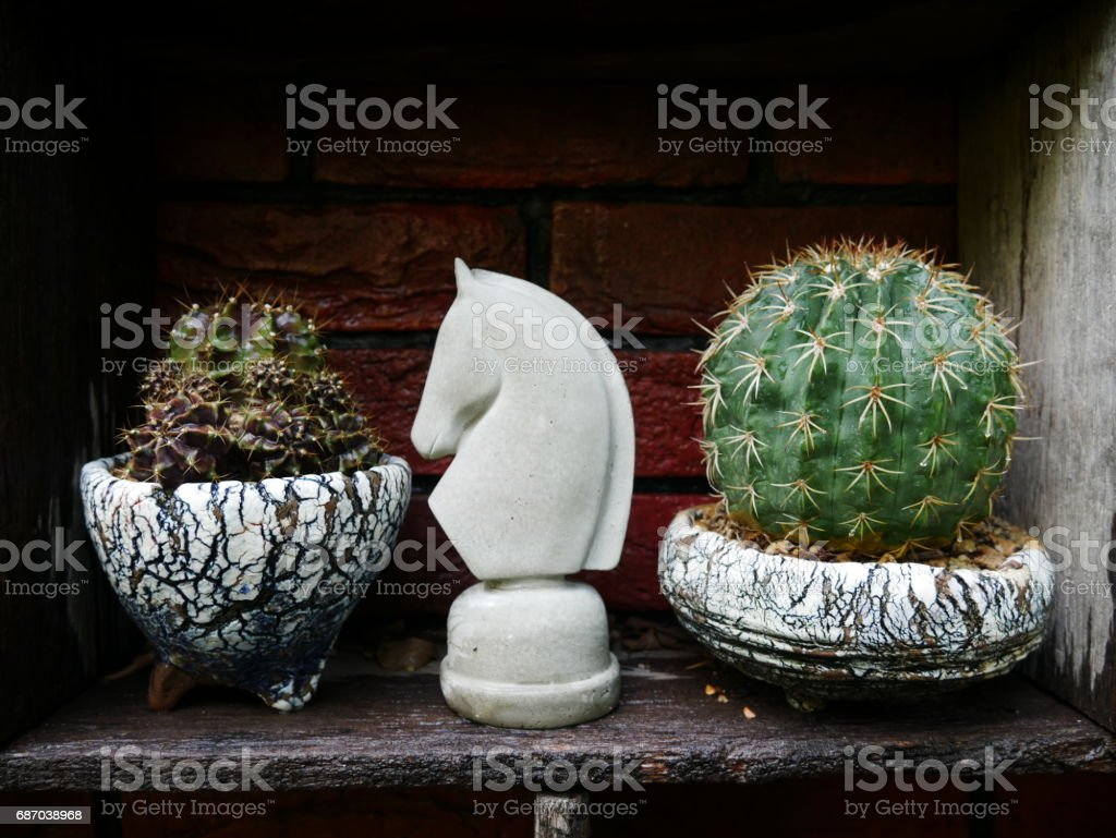 green cactus close up with horse mini statue in garden stock photo