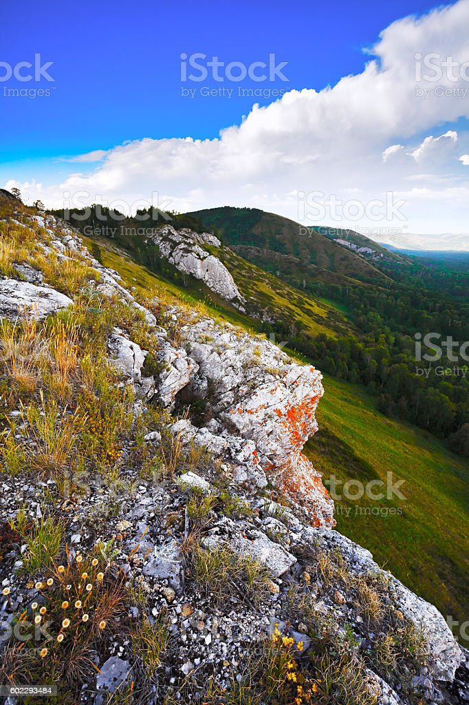 Green canyon and the Mountain gorge. Foggy morning. stock photo