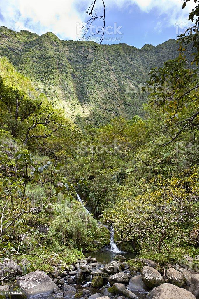 Green Canyon, Kauai stock photo