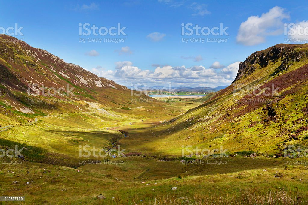 Green canyon with road in synny day stock photo