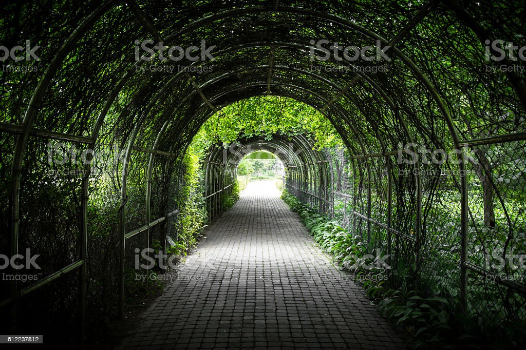 Green cave stock photo